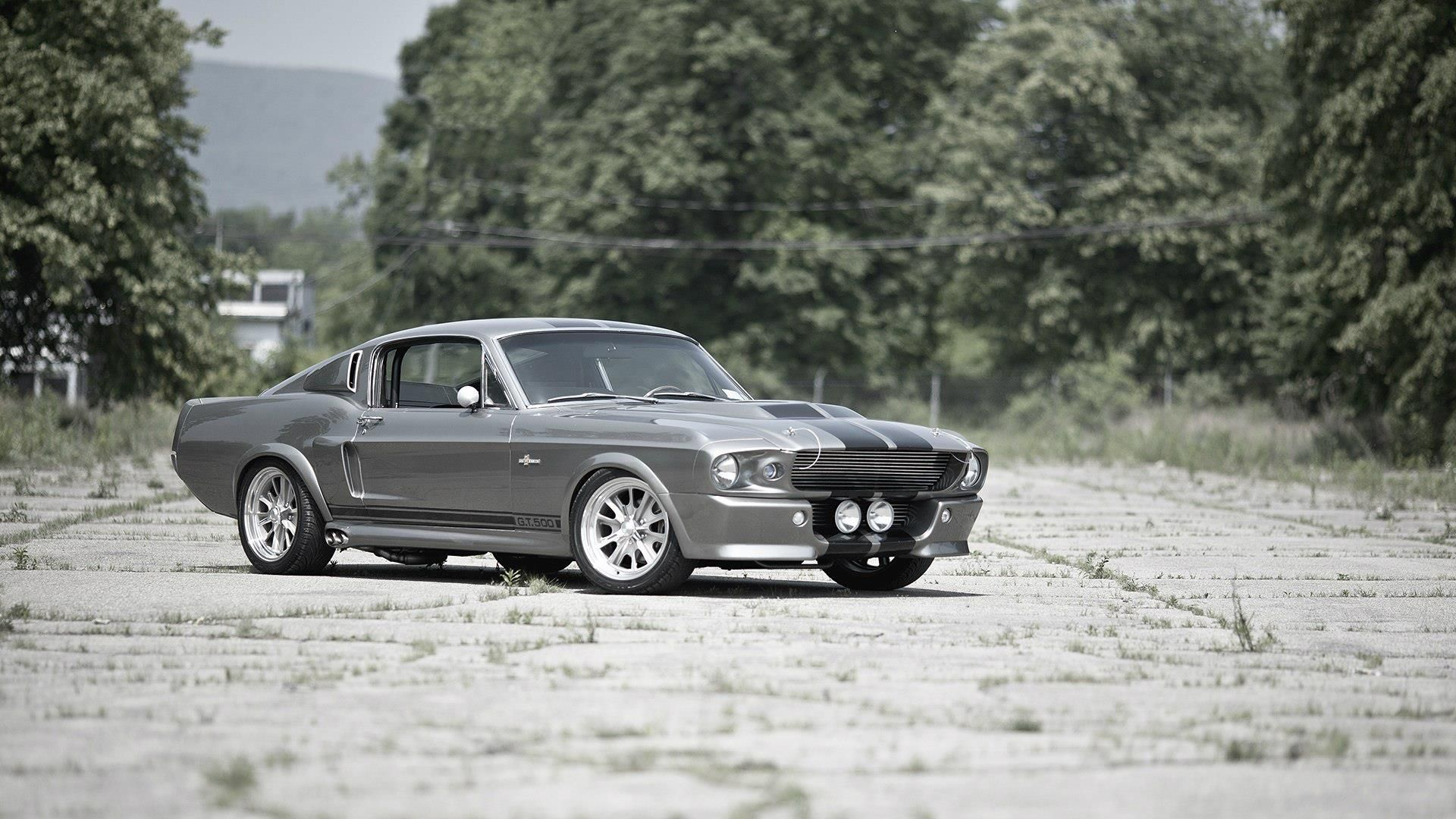 Mustang Shelby Gt500 Eleanor Y Gt350 Ford Mustang Ford Mustang