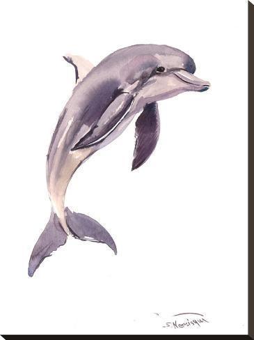 'Dolphin' Stretched Canvas Print – Suren Nersisyan | Art.com