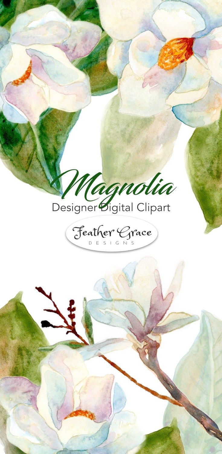 Beautiful Magnolia Flowers Leaves The Perfect Clipart Collection For Your Next Design Project Now At Fiftyjew Etsy Printable Art Etsy Digital Art Clip Art