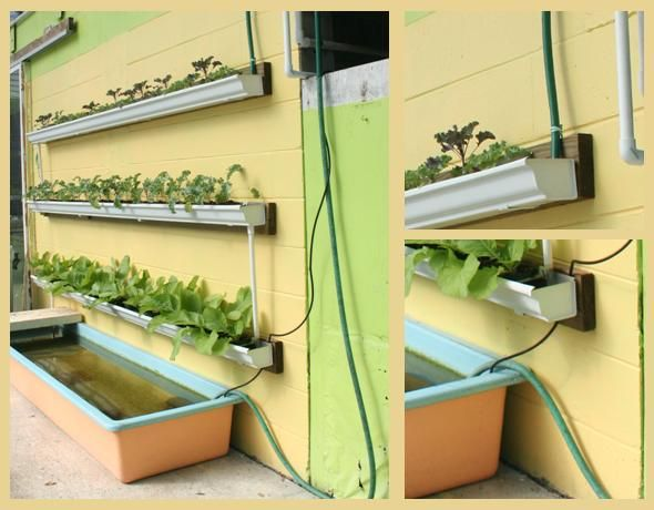 Do It Yourself Home Design: Diy Vertical Garden With Fish Pond