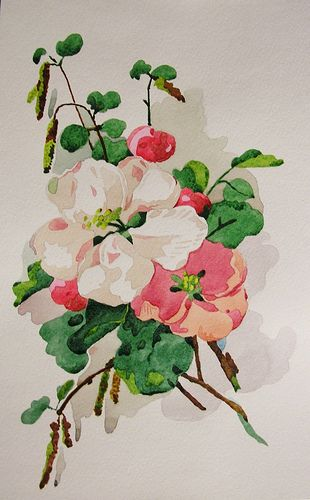 Apple-tree flowers watercolor