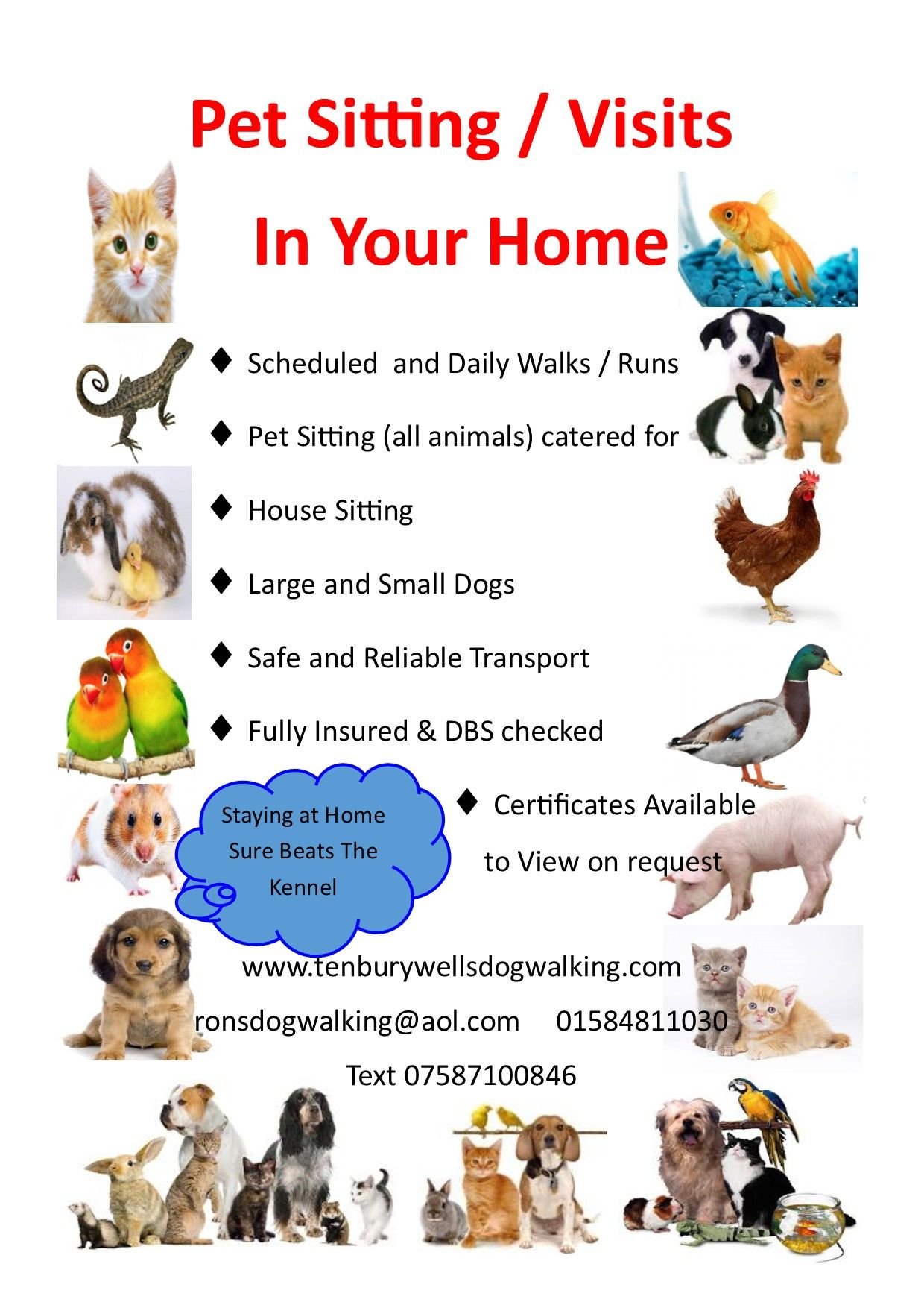 Pin on Tenbury Wells Dog Walking & Pet Care Services