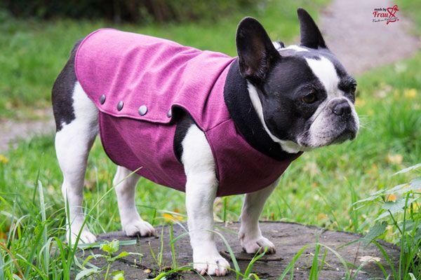 Hundemantel Aus Softshell Hunde Französische Bulldogge Hunde