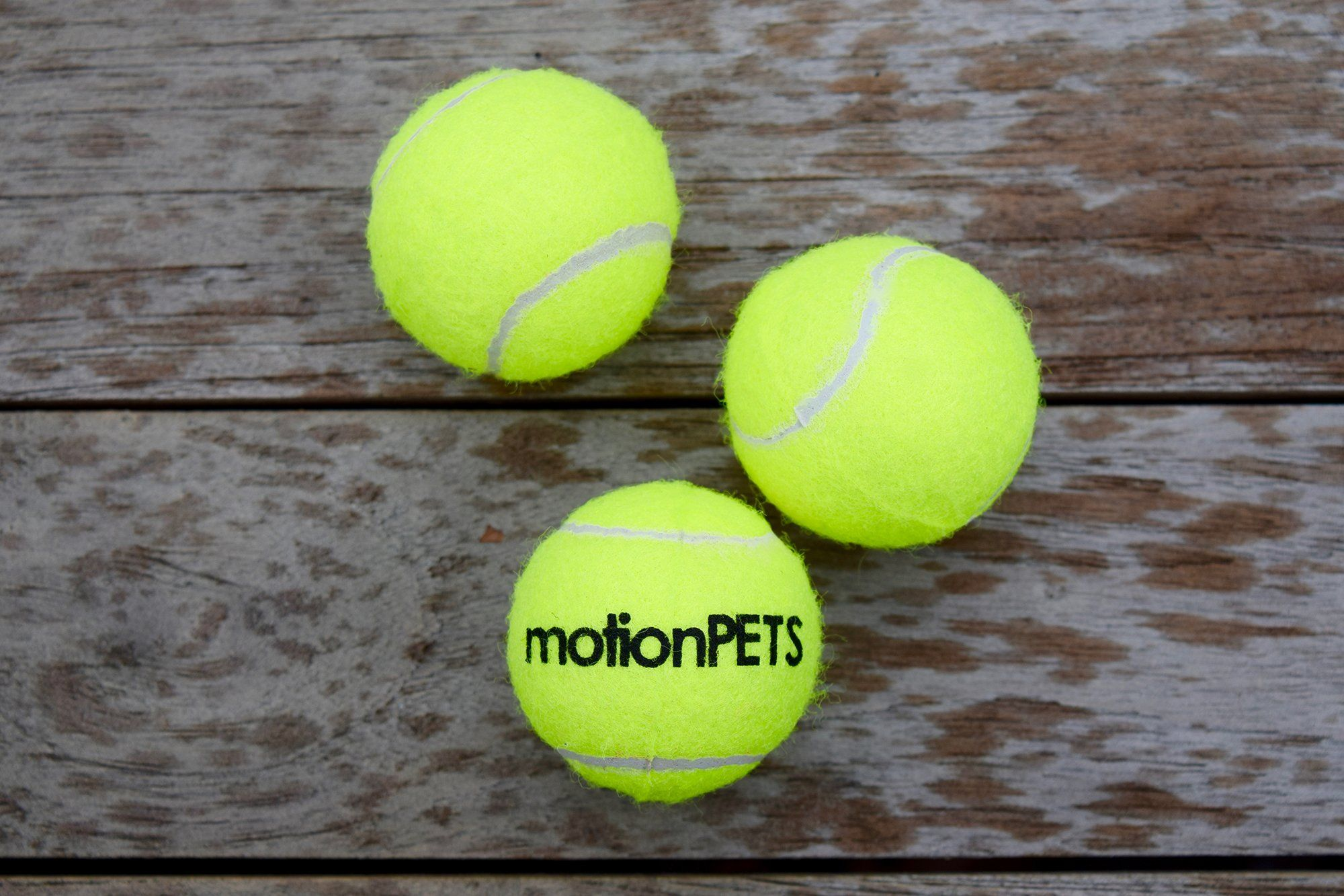 Motionpets Sqb25 Squeaky Dog Toy Tennis Balls Small 2 Yellow Pack Of 3 Read More At The Image Link This Is An Affiliat Tennis Balls Dog Toy Ball Dog Toys