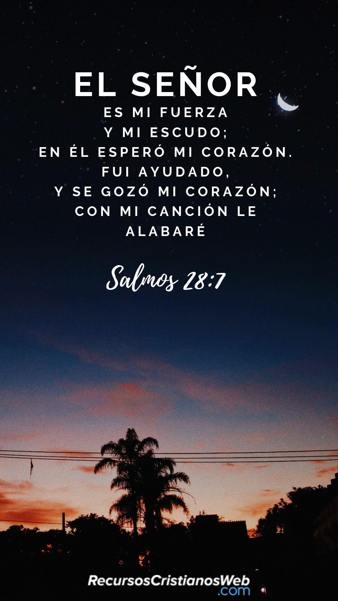Versículos Bíblicos De Alabanza Y Adoración Salmos 28 7 Frases Espirituales Citas Sobre Dios Palabra De Dios Biblia