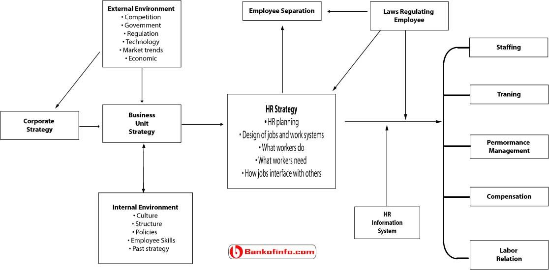 Process Of Strategic Human Resource Management  Human Resource