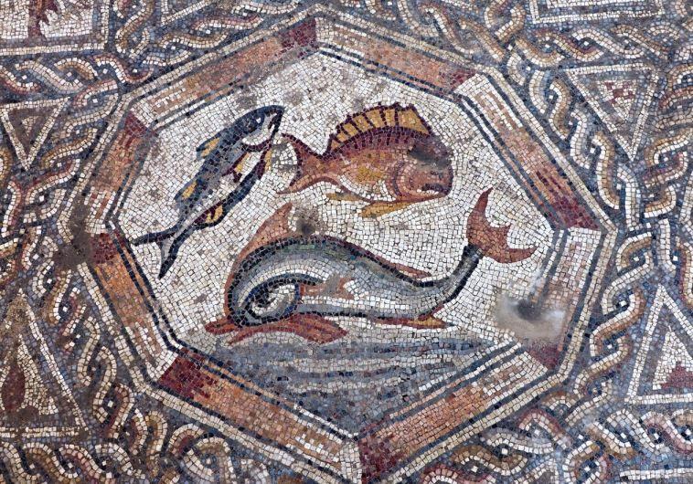 Roman and Byzantine-era mosaic discovered in Lod - Israel News - Jerusalem Post