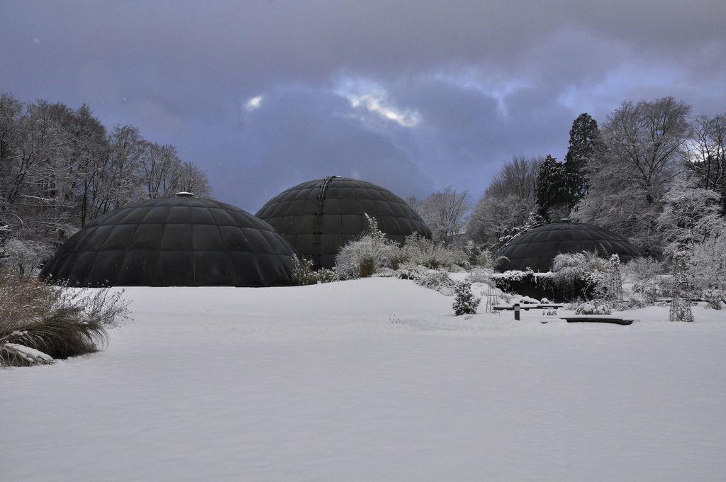 Greenhouse Domes Zurich Botanical Garden Botanischer Garten Zurich Botanical Gardens Dome Greenhouse Greenhouse