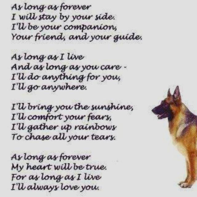 in loving memory of Maggie, Best Dog in the World. still ...