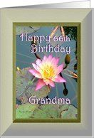 66th Birthday / Grandma / Pink Water Lily Card by Greeting Card Universe. $3.00. 5 x 7 inch premium quality folded paper greeting card. Greeting Card Universe offers the largest selection of birthday cards on the web. Whether for one person or the whole family, a paper card will make their birthday memorable this year. Send a paper birthday card from Greeting Card Universe this year. This paper card includes the following themes: Madeline Allen, Digital-Art, and SmudgeArt. ...