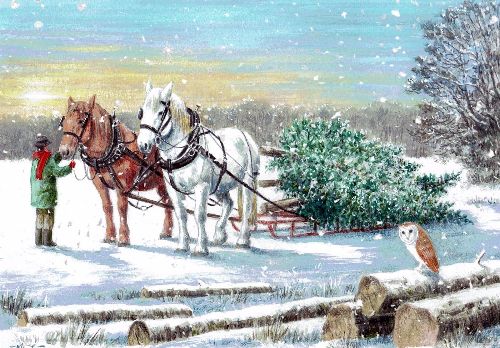 Charity Christmas Cards - In Aid Of Horse And Animal Welfare Charity ...
