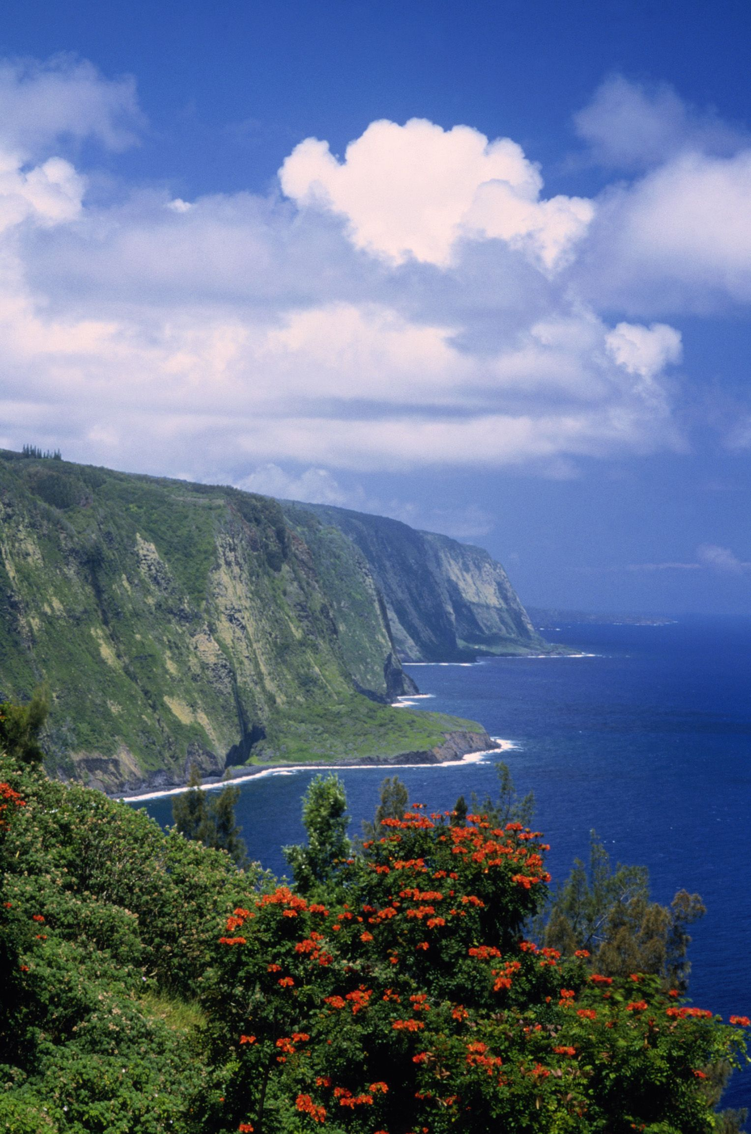 Bask in the towering cliffs along Kauai's North Shore.