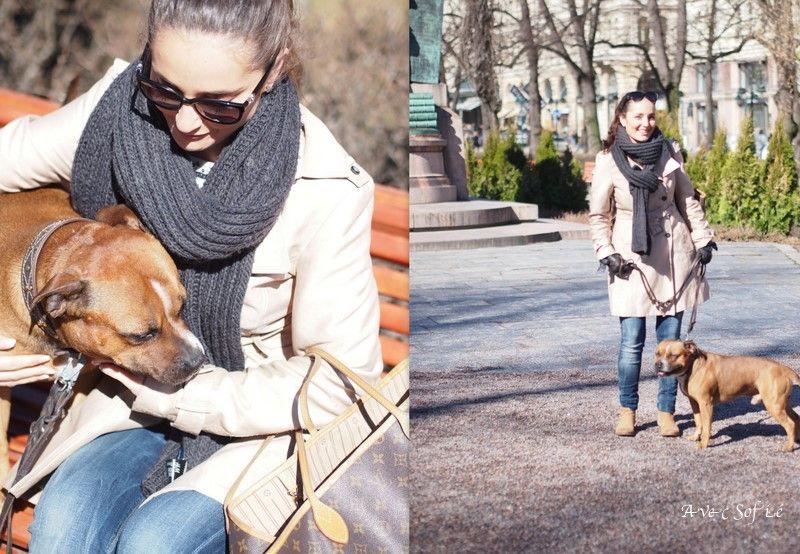Avec Sofié-blog/Hunden