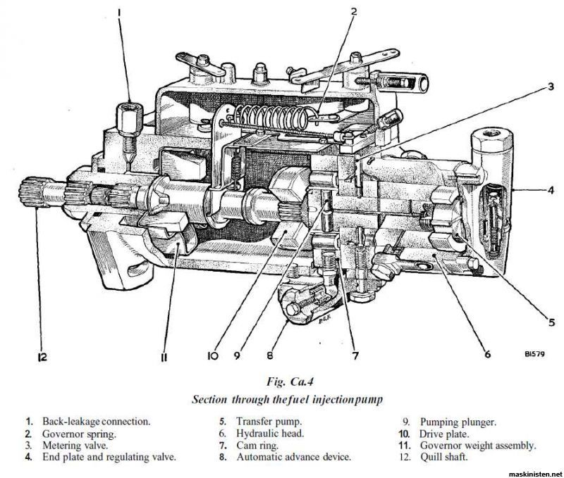cav 3 cylinder injector pump diagram  Google Search