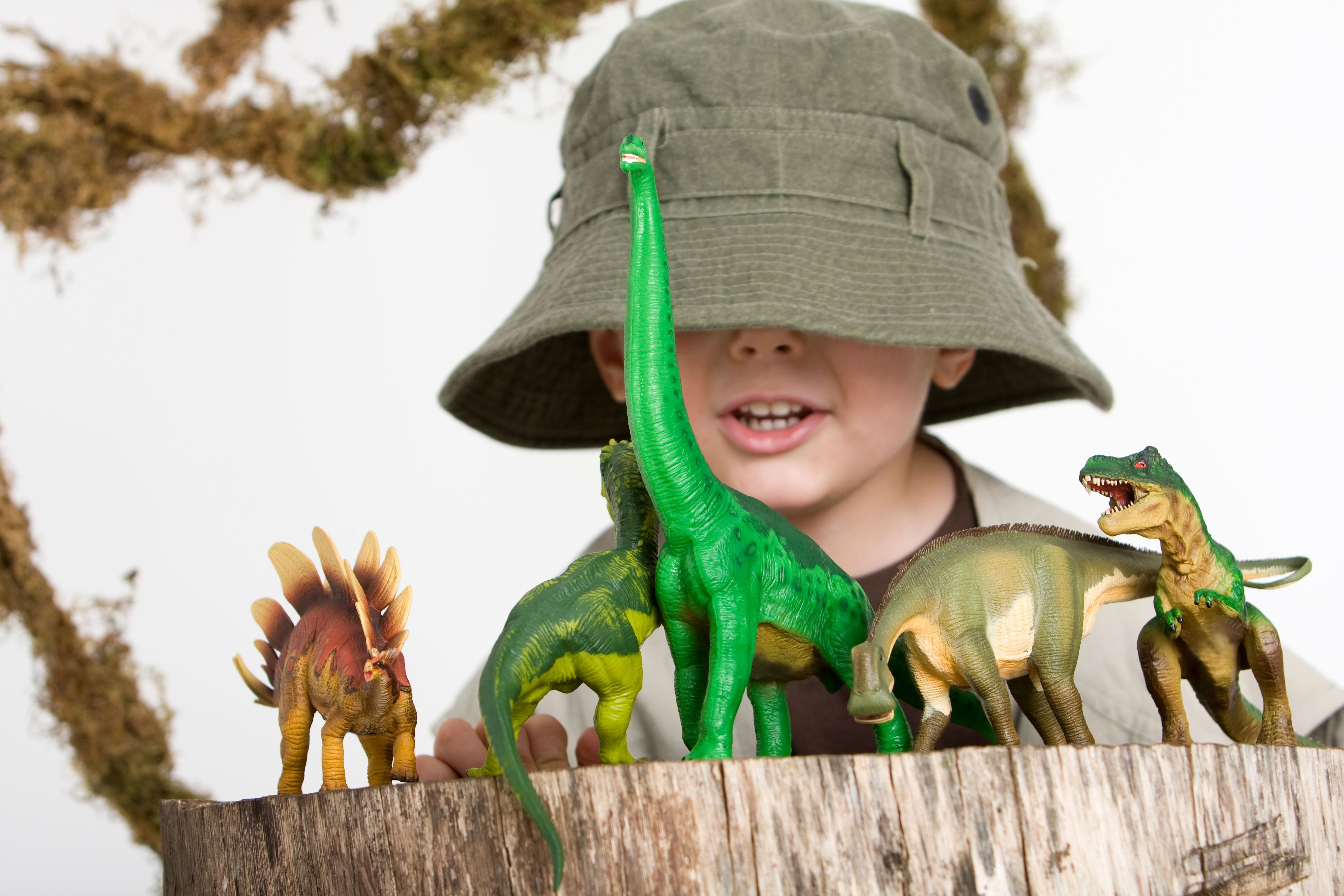 Learn About Dinosaur With This Free Printable Set