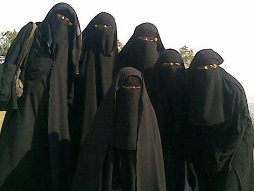 Muslim Women In Niqab   image muslimah wearing niqab niqab arabic arabian in niqab naqaab ...
