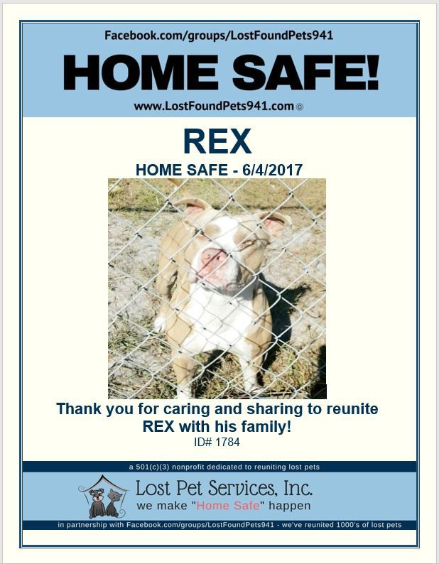 Rex is Home Safe! #WeMakeHomeSafeHappen #LostPetServices #ThankYou - lost pet poster