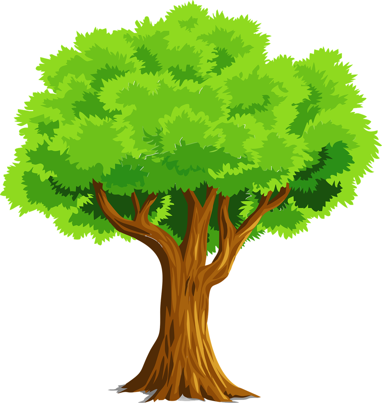 Free Image on Pixabay Nature, Plant, Tree Tree clipart