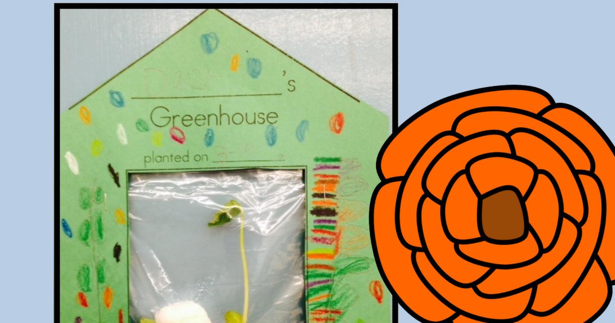 Greenhouses! {FREEBIE} | Science | Kindergarten science
