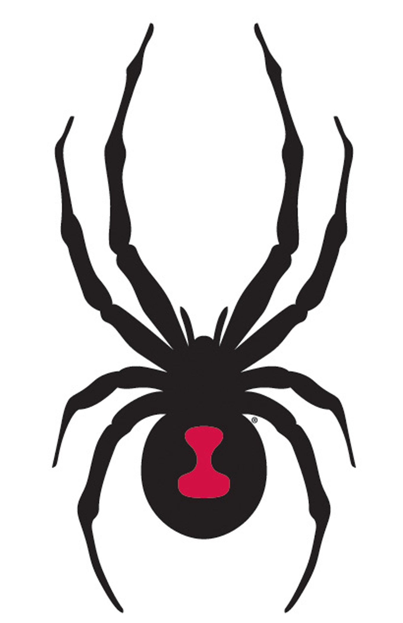 custom dye stencils to share with others - www.discgolfersr.us ... - Black Widow Spider Coloring Pages