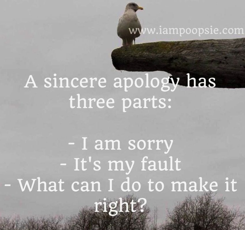 Sincere Apology Quote 3 Parts I Am Sorry It S My Fault What Can I Do To Make It Right Apologizing Quotes Sorry Quotes Quotes That Describe Me