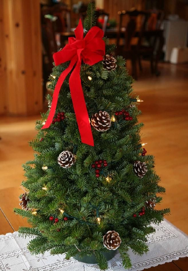 50+ Latest Christmas Decorations 2016   Christmas Is The Celebration That  Serves As A Way
