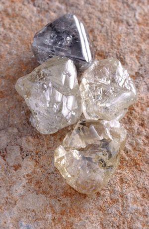 Picture Book of Raw Uncut Unique Rough Diamonds