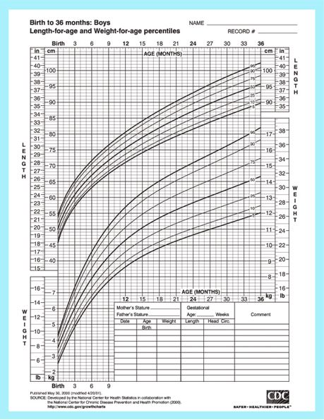 Baby Size Chart Shows The Growth And Development Of A Baby Jj