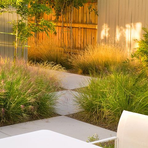 More pics and tips for MCM landscaping on source. More pics and tips for MCM landscaping on source    Mid Century