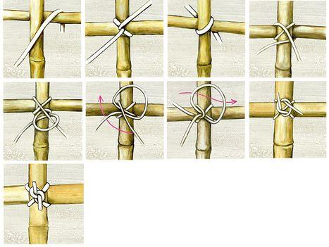 z une aus bambus selber machen heimwerkermagazin garten pinterest bambus zaun und garten. Black Bedroom Furniture Sets. Home Design Ideas