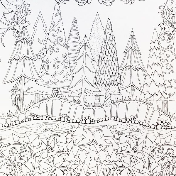 Artist Johanna Basford Enchanted Forest Coloring Pages Garden Flower Colouring Adult Detailed Advanced Printable Kleuren Voor Volwassenen Coloriage Pour