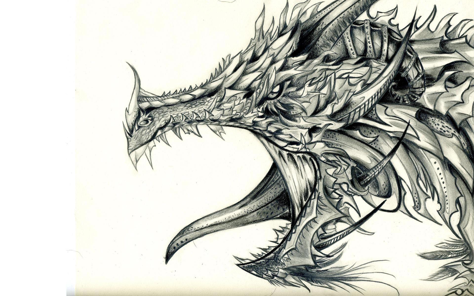 Cool Dragon Drawing
