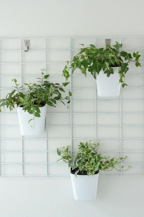 diy living wall tutorial vertical garden planters diy on indoor herb garden diy apartments living walls id=77866