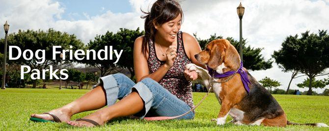 Dog Friendly Parks Hawaiian Humane Society Dog friends