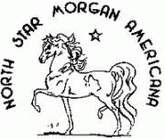 Horse Show Central ad logo for upcoming show – North Star Morgan, Aug 2-4, MN If you live near and like to show horses, view details http://www.horseshowcentral.com