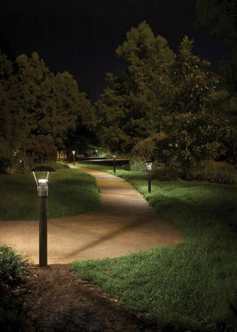 Backyard Trees Outdoor Lighting