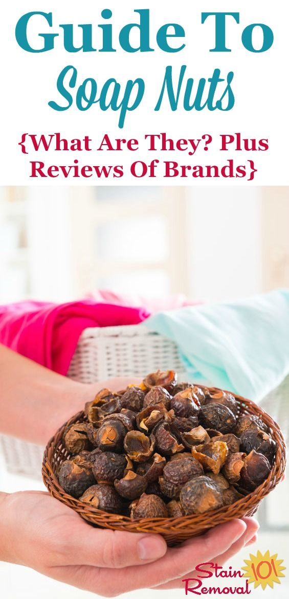 Soap Nuts Reviews Uses Information For Natural Laundry