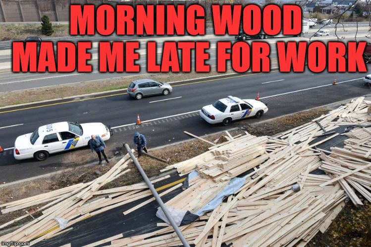 Morning Wood Is Not Always A Good Thing Morning Wood Made Me Late For Work Image Tagged In Memes Morning Wood Funny Late Wo Work Images Image Morning Wood