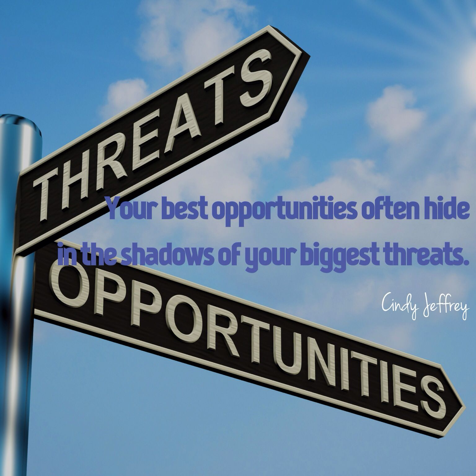 Manage Your Opportunities Be: Threat Or Opportunity? It's Your Choice