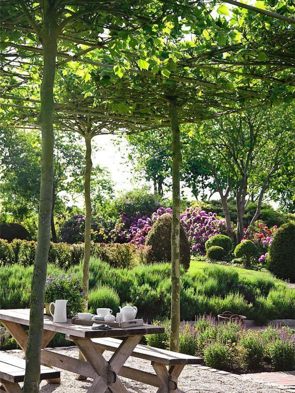 Gartentipps f r gesunde pflanzen und blumen garten - Balkongarten anlegen ...