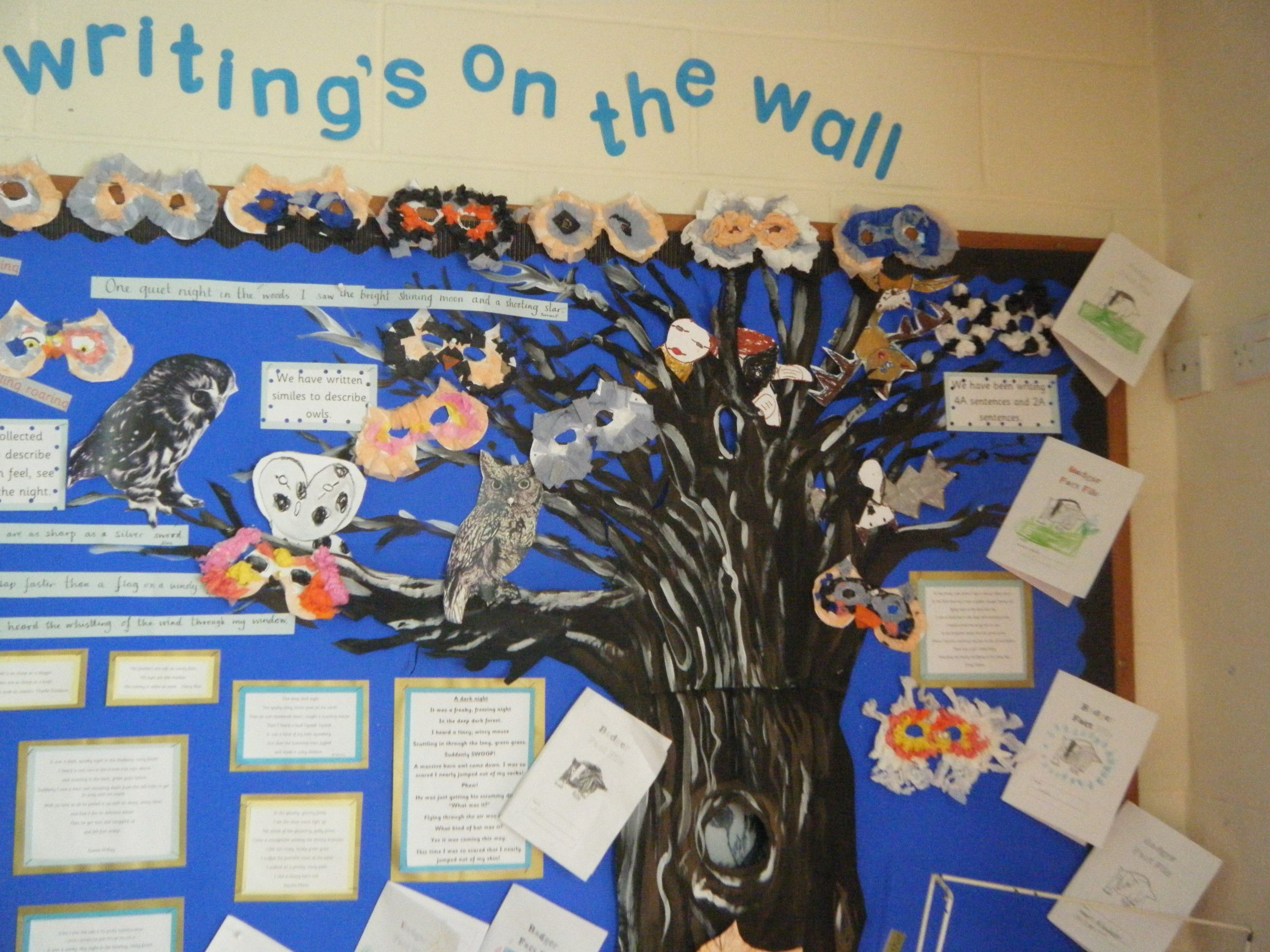 Nocturnal Animals Display In Year 2