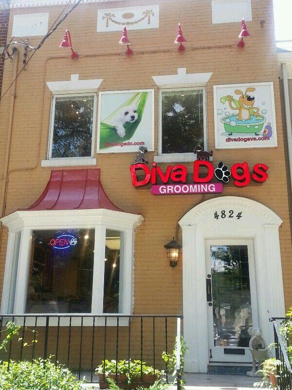 Diva Dogs Grooming In Dc Decoracion De Unas