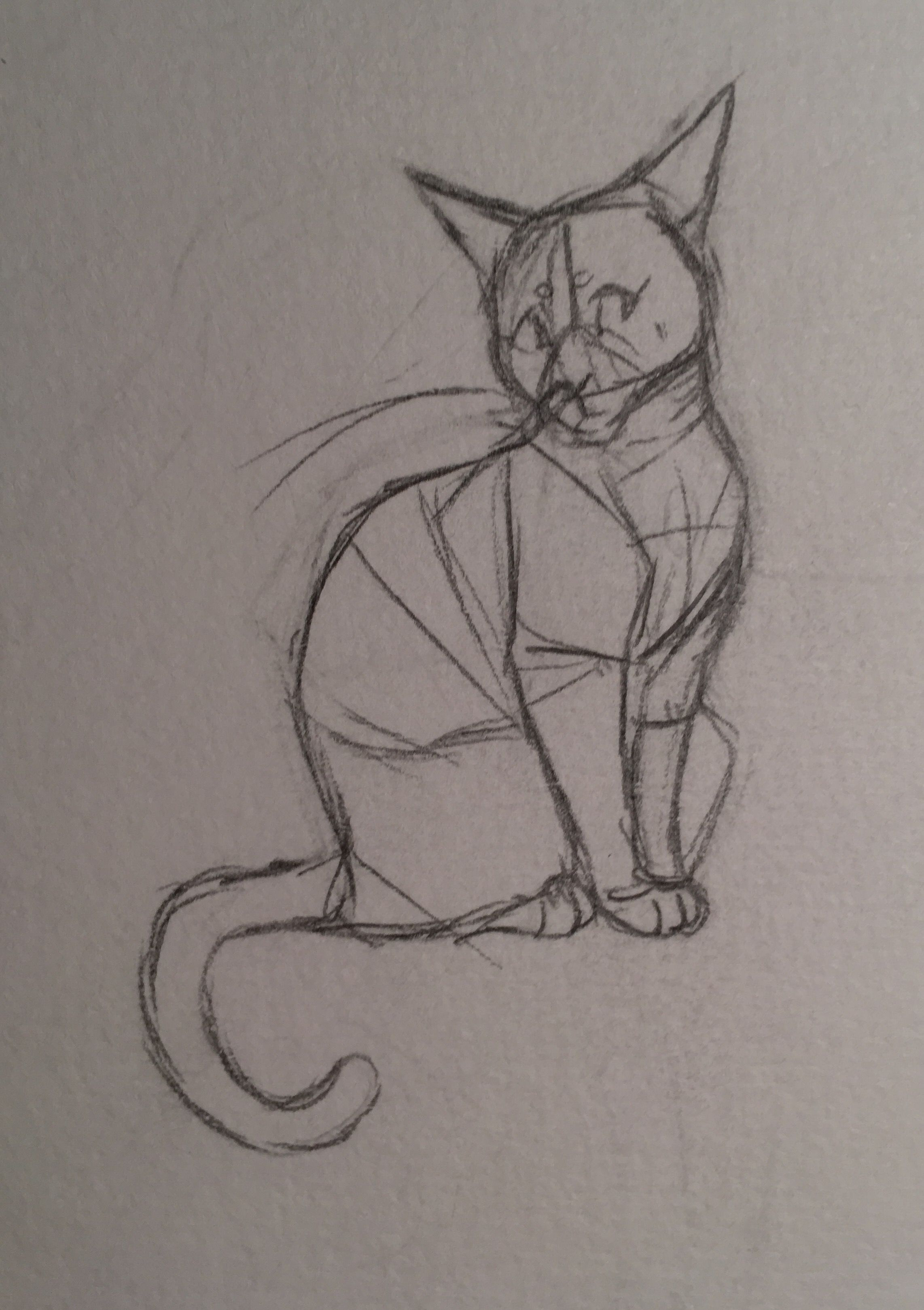 A Pose Practice Sketch I Used A Pic Of A Real Cat As Reference