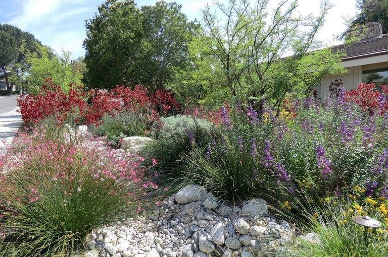 ff702ae0cb175196888242907ea9c52d - Care And Maintenance Of Southern California Native Plant Gardens