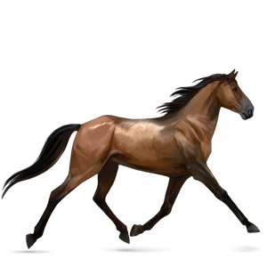Tennessee Walker Species Horse Size From 14 3 Hands To