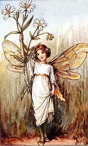 Flower Fairies Of Spring Cicely Mary Barker Vintage Fairies Flower Fairies Fairy Illustration
