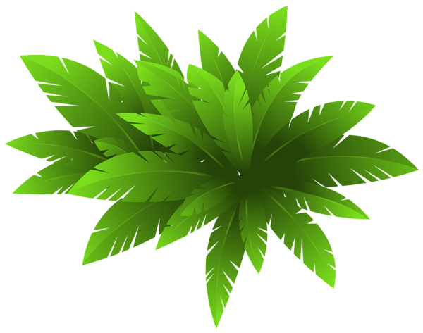 Green Plant Decoration Png Clipart Image Flower Png Images Flower Clipart Plant Decor