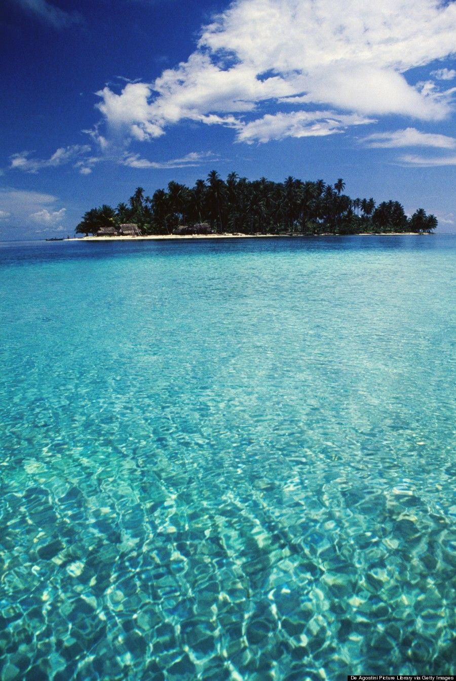 Perfect Island And Look At That Water Dog San Blas Panama 27 Of The Best Places In World To Swim