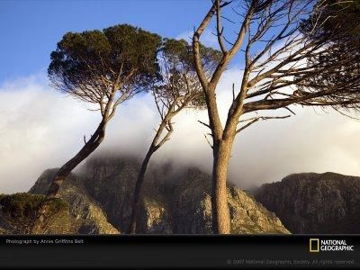 national+geographic+full+episode | Watch National Geographic Documentaries Season 4 Full Episodes