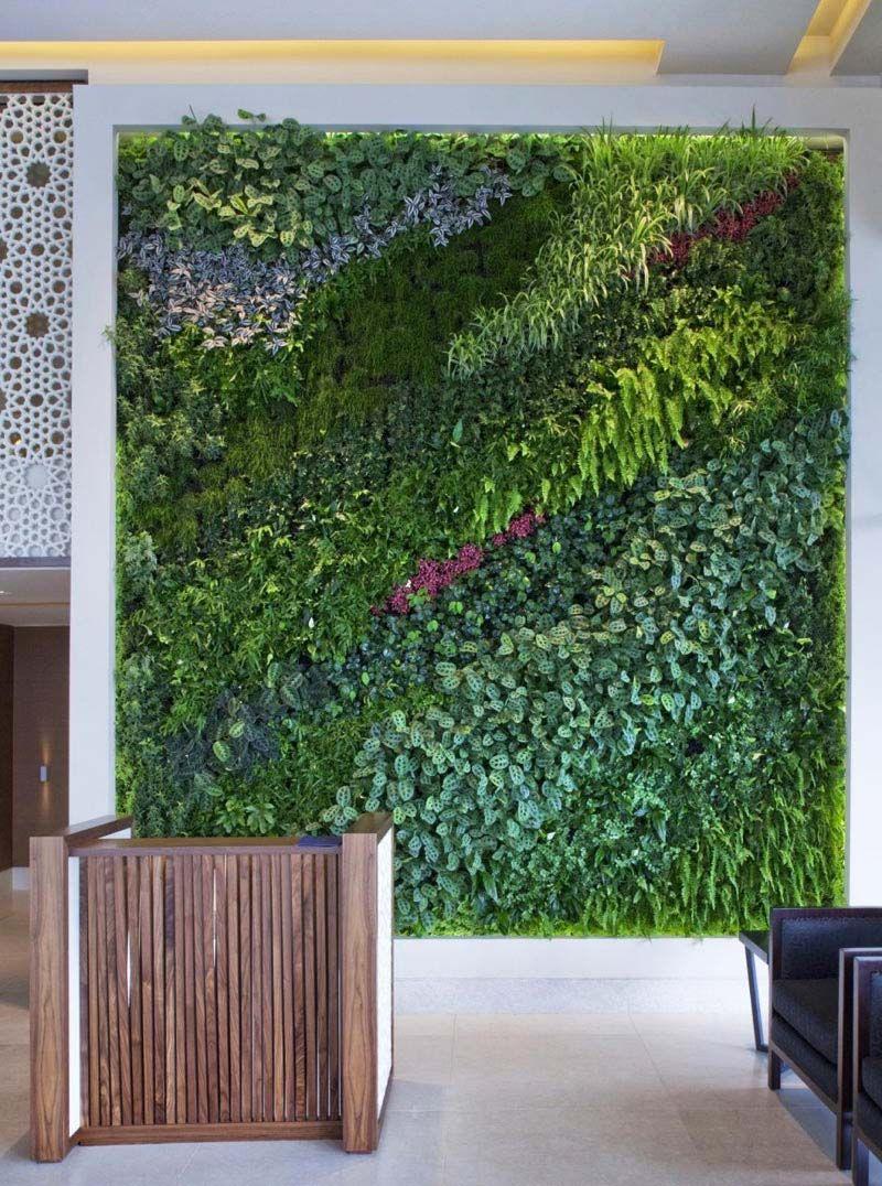 Living Wall Vertical Garden Benefits   Quiet Corner